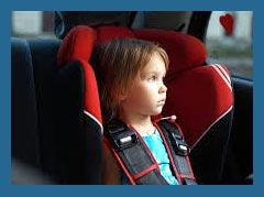 Готовится новый запрет для водителей